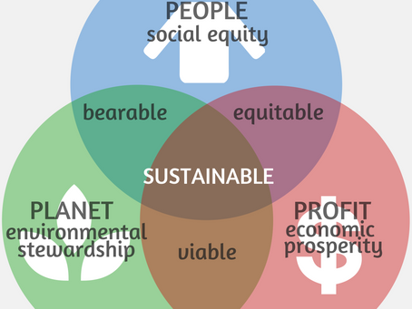 Balancing Planet, People & Profit: A New Lens for 21st Century Education