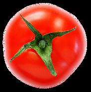 Tomato (ea)