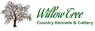 willowtree_logo-1.png