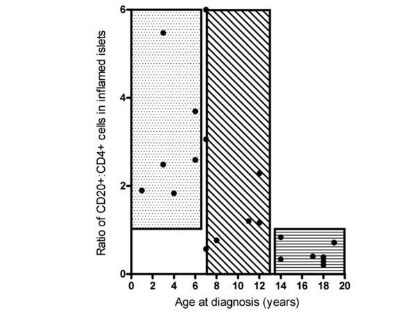 Ratio of CD20 CD4 cells in inflamed islets