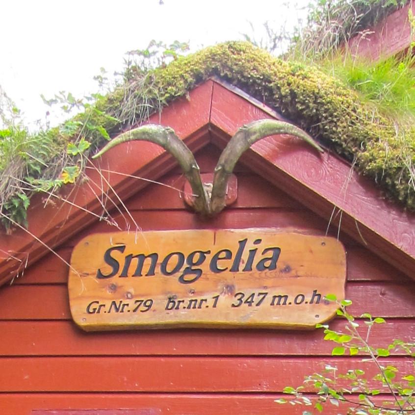 Storfjordens Venner Synfaring Smogelia 6