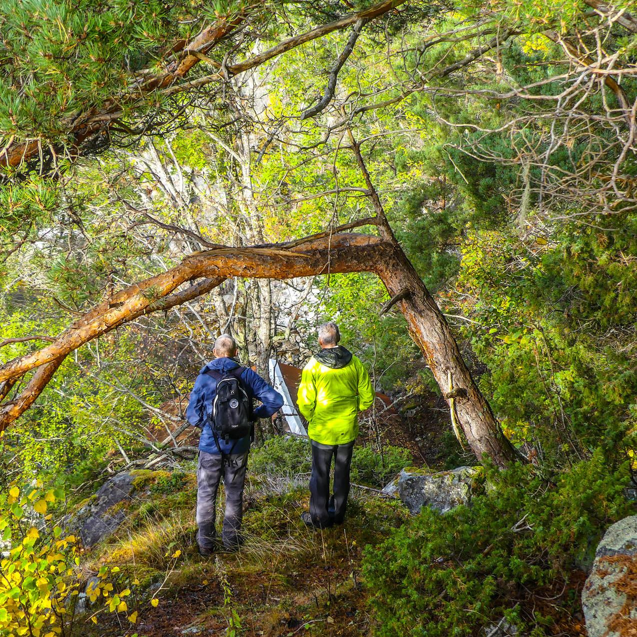 Djupedalen med Storfjordens Venner 19 okt 2017 P1490672-131
