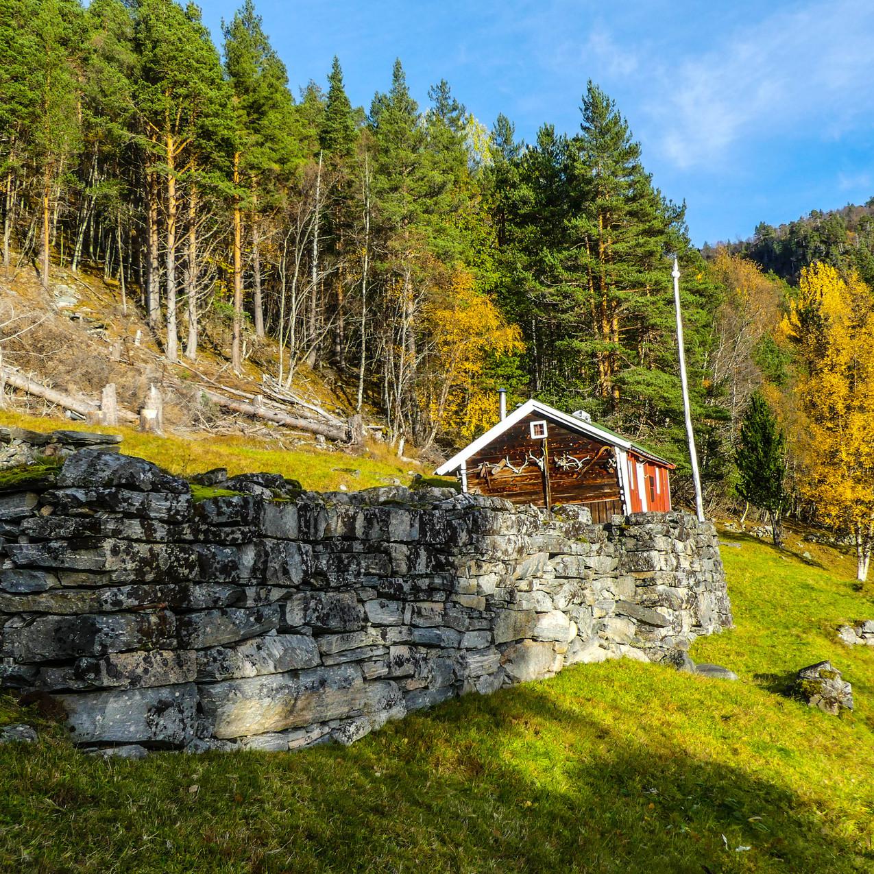 Djupedalen med Storfjordens Venner 19 okt 2017 P1490723-171