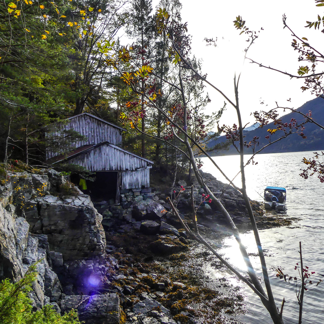 Djupedalen med Storfjordens Venner 19 okt 2017 P1490660-119