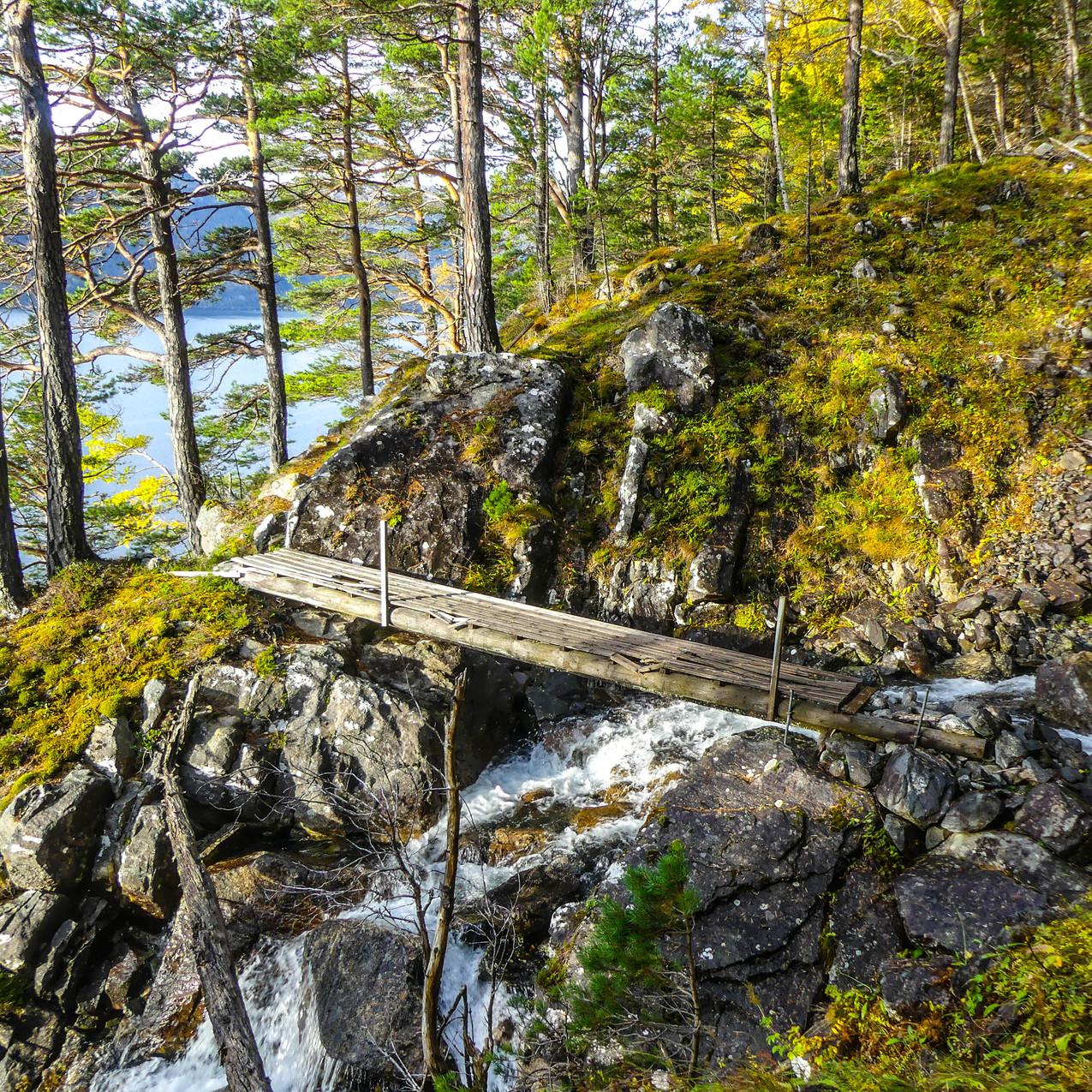 Djupedalen med Storfjordens Venner 19 okt 2017 P1490681-134