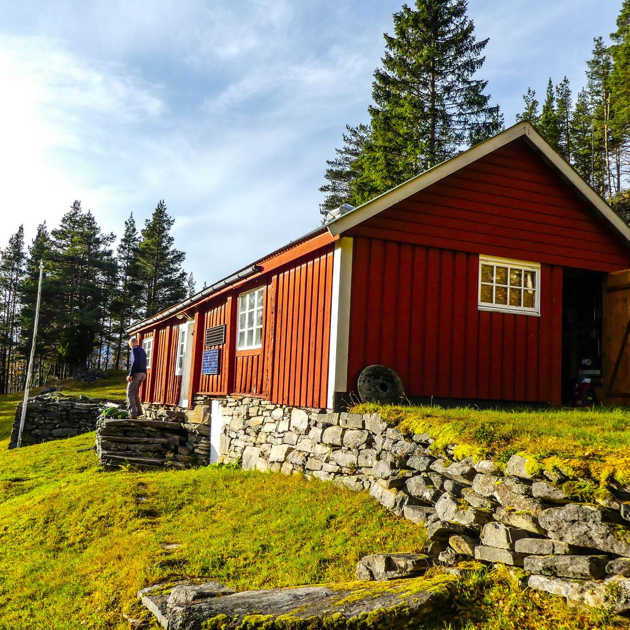 Djupedalen med Storfjordens Venner 19 okt 2017 P1490721-169