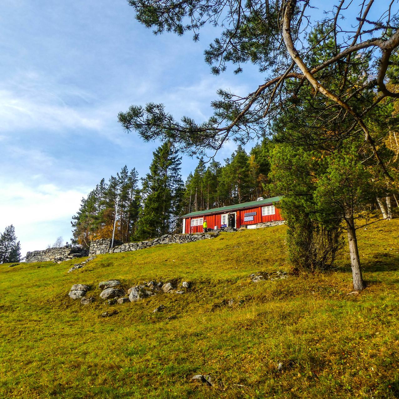 Djupedalen med Storfjordens Venner 19 okt 2017 P1490706-154