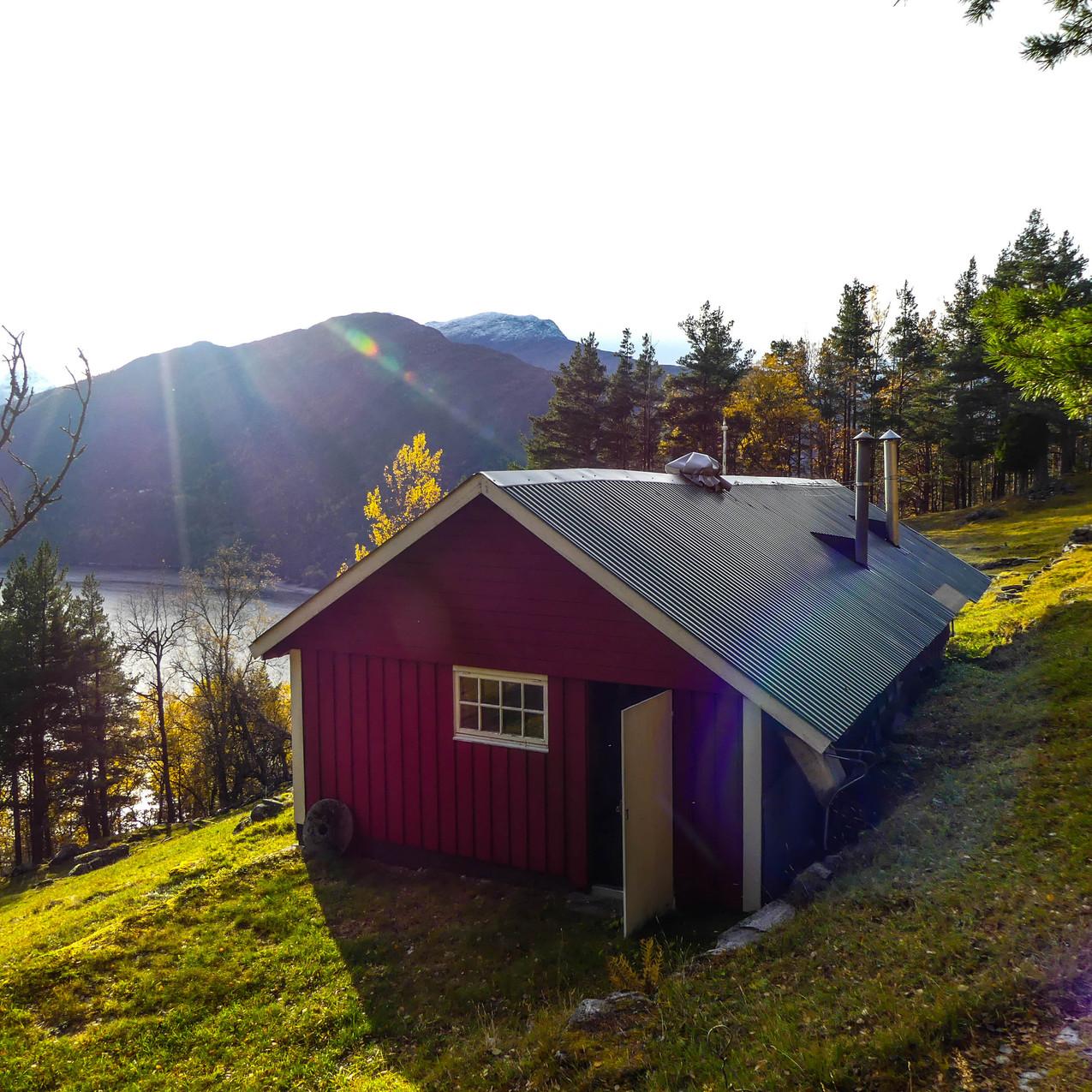 Djupedalen med Storfjordens Venner 19 okt 2017 P1490717-165