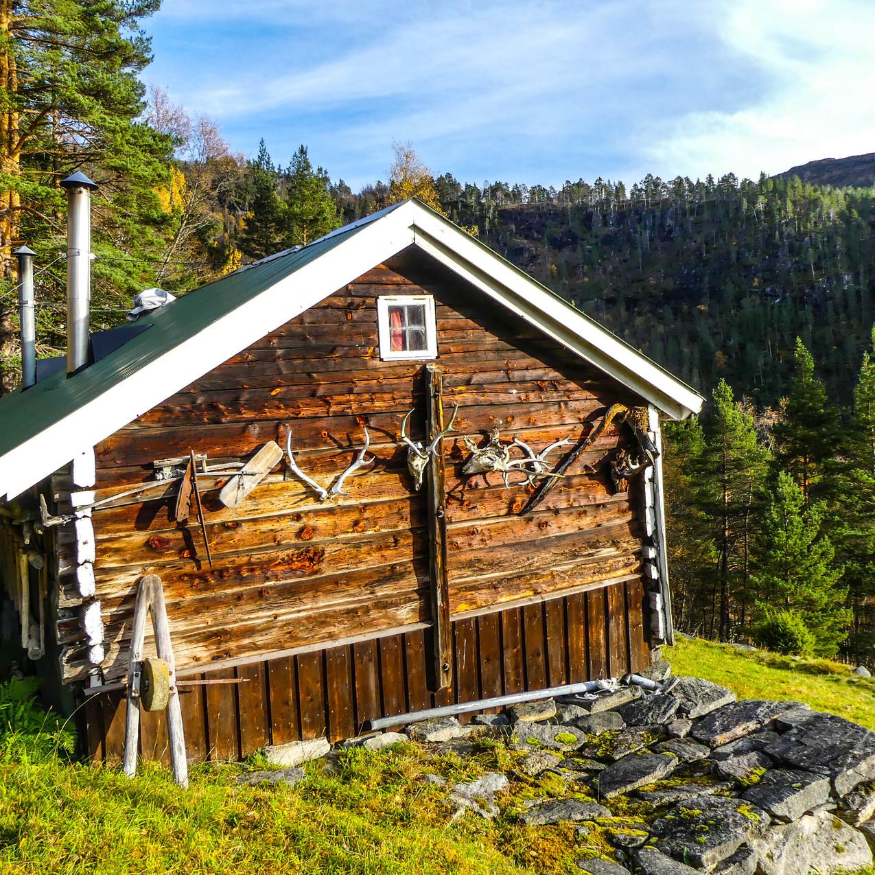 Djupedalen med Storfjordens Venner 19 okt 2017 P1490715-163