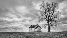 M.PAS.House and Tree.jpg