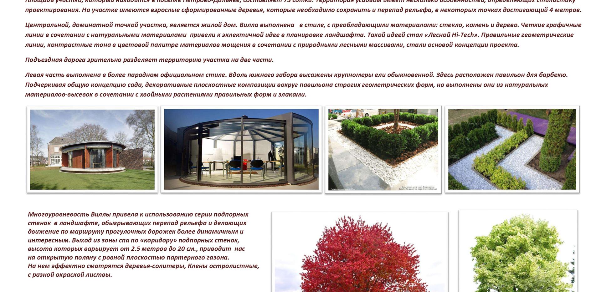 Концепт Петрово-Дальнее_ЛюксСад_pages-to
