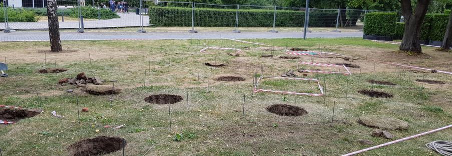 Подготовка посадочных ям.