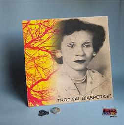 Torpical Diaspora.jpg