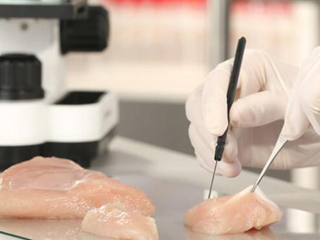 Laboratuvarda Üretilen Tavuk Eti!