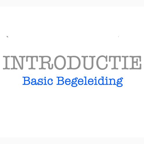 Basic Begeleiding Introductie - 4 sessies