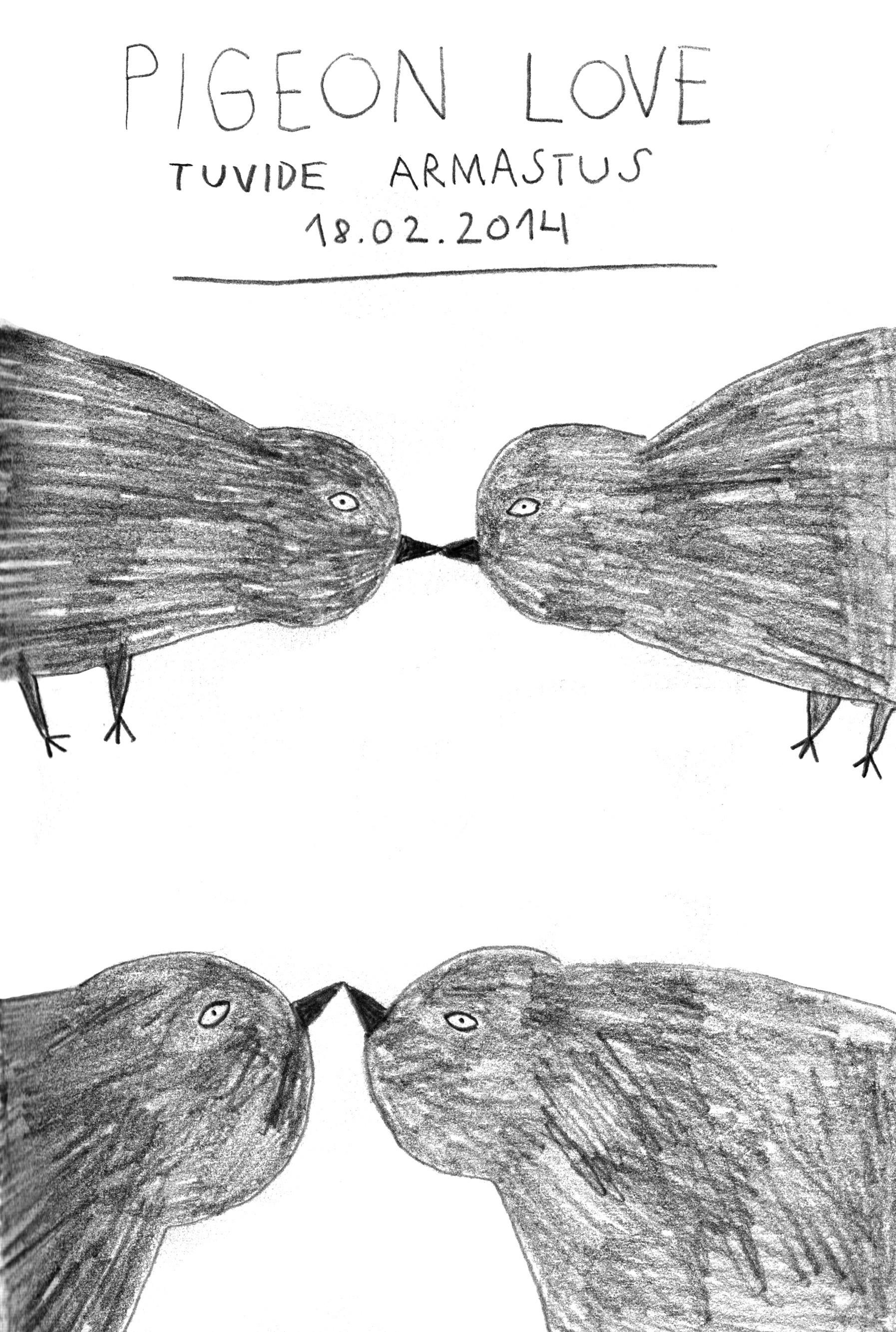 Pigeon Love01.jpg