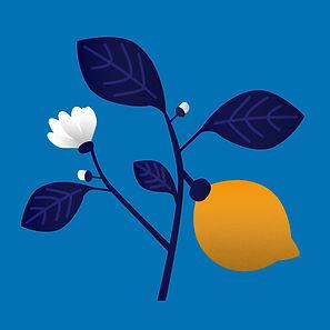 8- lemons_v002.jpg