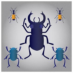 11 - bugs.jpg