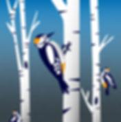 27 - Birds.jpg