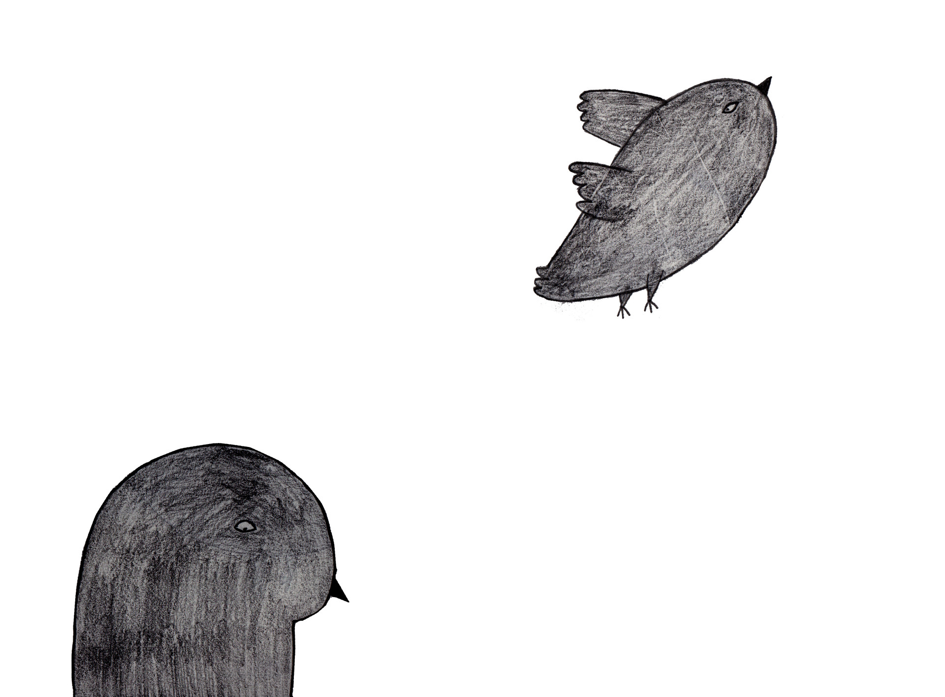 Pigeon Love04.jpg