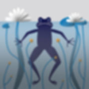 20 - Frog.jpg