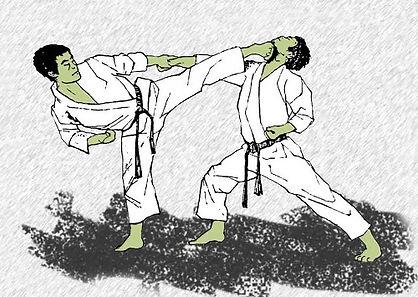 Shotokan Karate East Coast Shotokan Karate Norwich