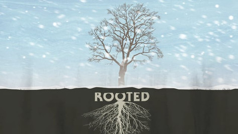 Rooted Title Animation