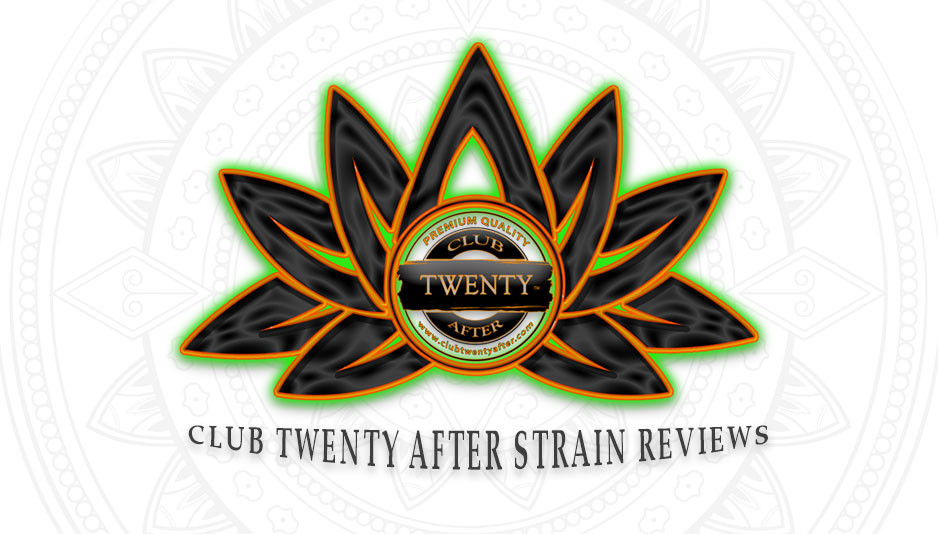 Club Twenty After Strain Reviews