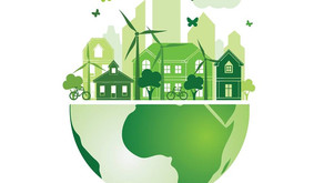 Increasing Interest in Sustainability
