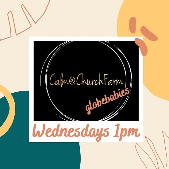 6 weeks Wednesday 1pm Calm@Church Farm (Pre-walkers)