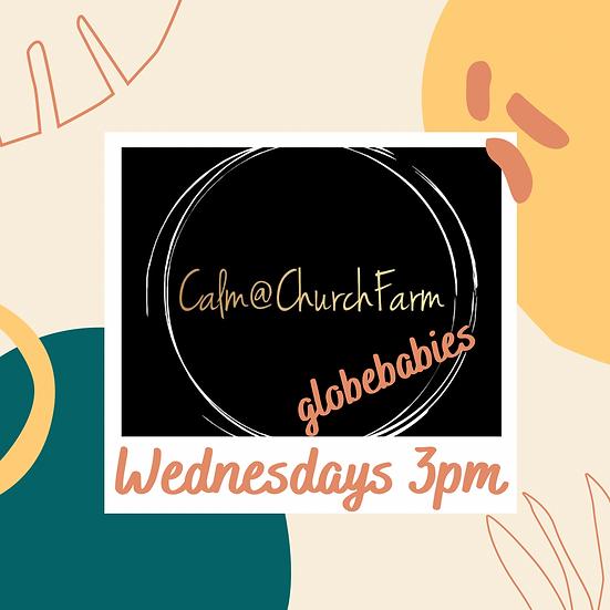 6 weeks Wednesday 3pm Calm @ Church Farm (Pre-walkers)