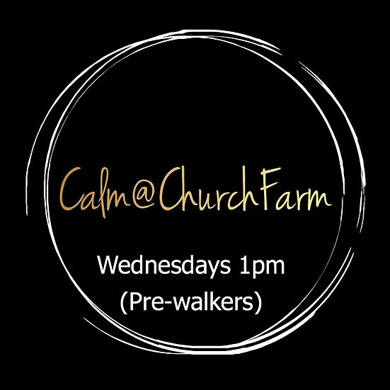 4 weeks Wednesday 1pm Calm@Church Farm (Pre-walkers)