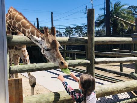 Zoo World @ Panama City Beach