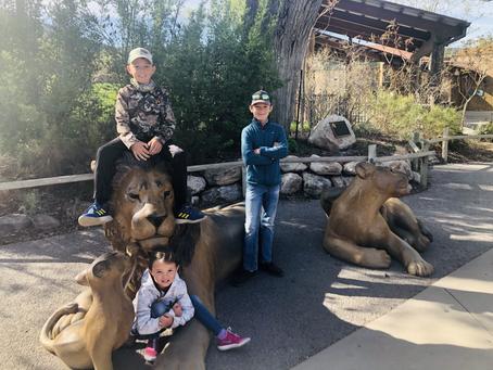 Hogle Zoo - Salt Lake City