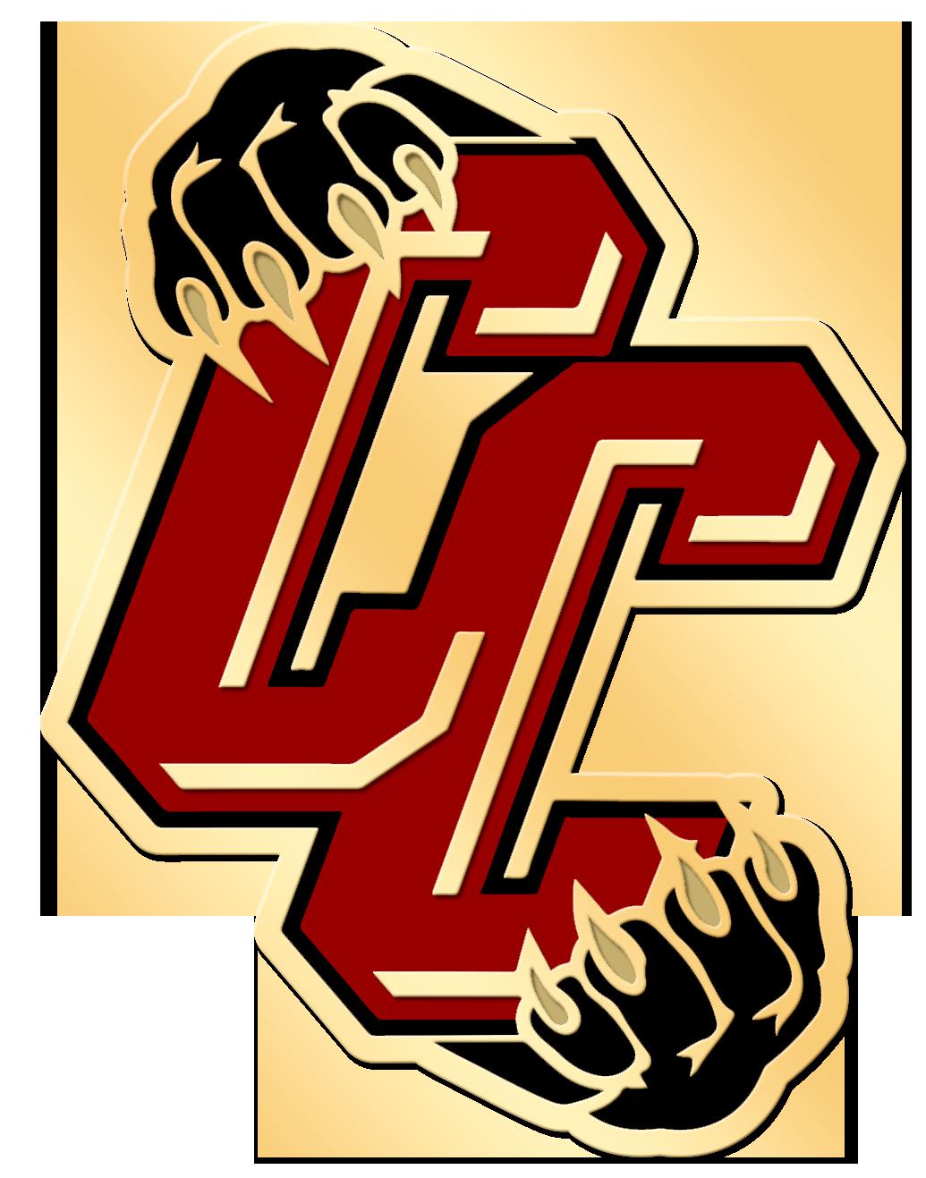 school sports teams logo pins.png