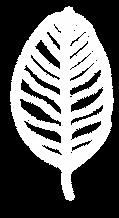 leaf white logo-09-09.png