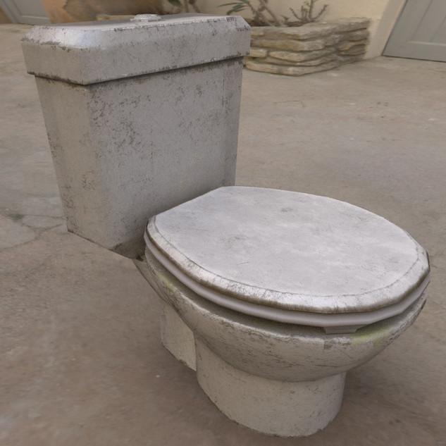 DF_ToiletSeat.jpg