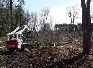 land-clearing-slider.jpg