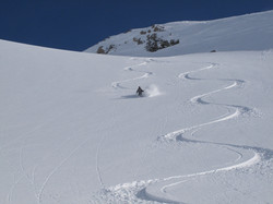 Powder skiing of miles