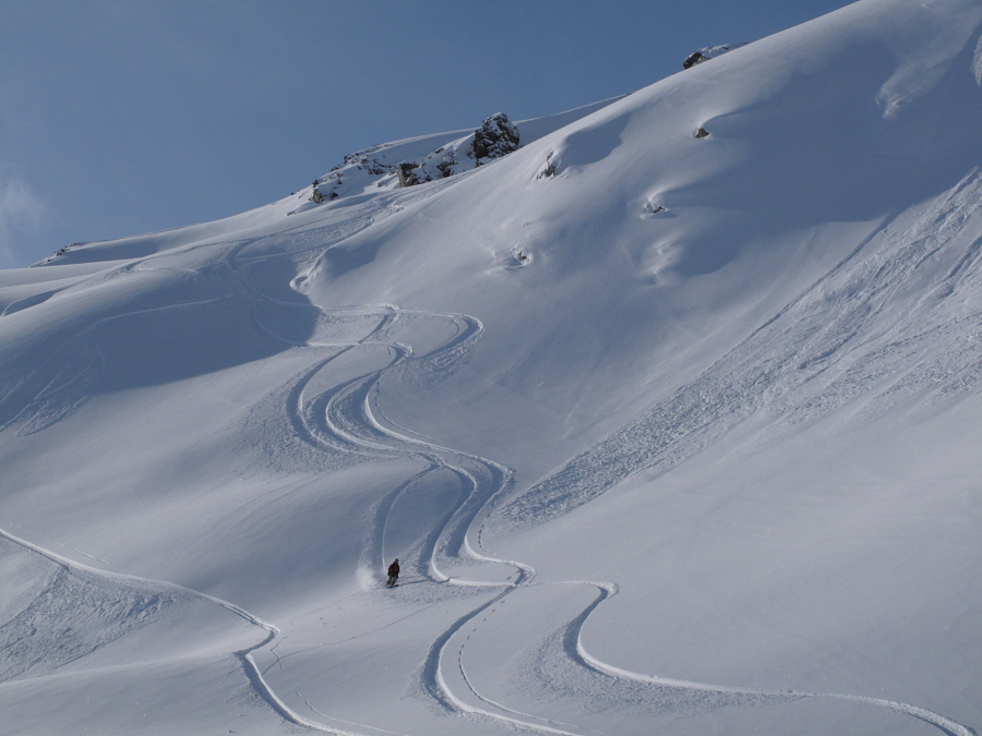Another powder turn