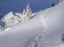 Untouched Wasatch Backcountry