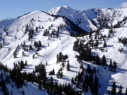 Silver and Days Fork Wasatch