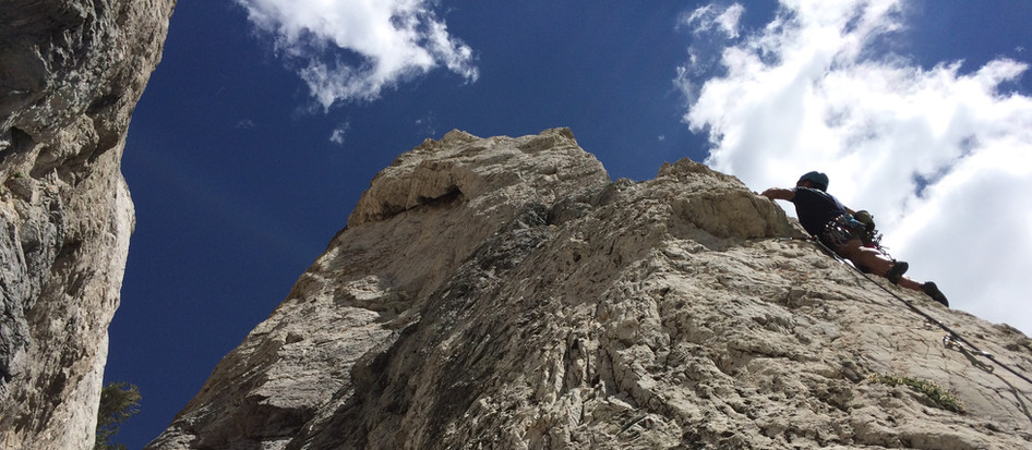 Little Cottonwood Limestone