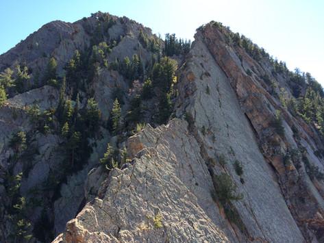 Kamp's Ridge