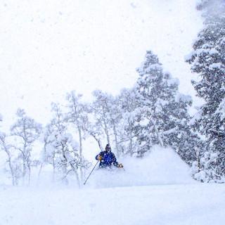 Deep Uinta Skiing