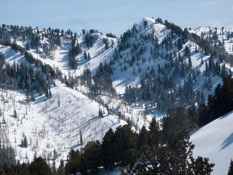 Virgin ski terrain