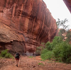 Wide Serpentine Canyon