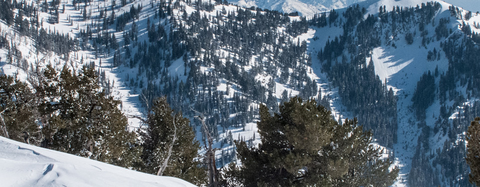 The northern Wasatch