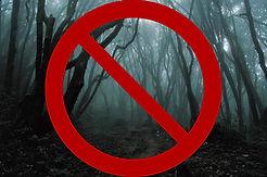 scary-woods.jpg