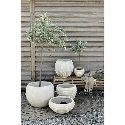 Lene Bjere Olive tree medium